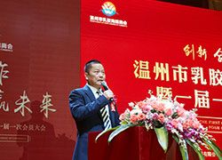 The Establishment Of Whenzhou Latex & Foam Chamber Of Commerce
